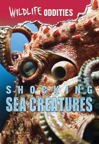 Shocking Sea Creatures