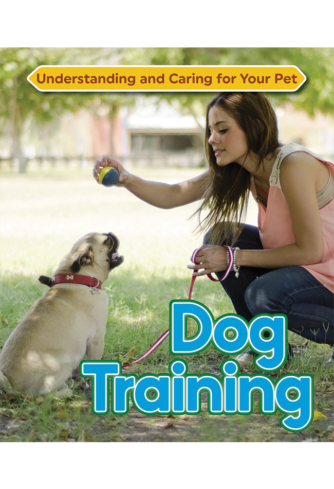 Dog-Training.png